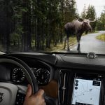 171028 Interior Large Animal Detection 2 150x150 - V90 Cross Country Photos