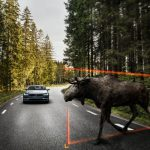 171033 Exterior Large Animal Detection Volvo S90 1 150x150 - V90 Cross Country Photos