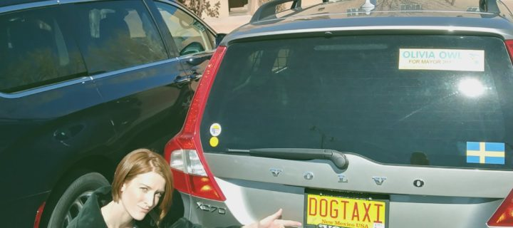 """P3 Volvo XC70 with """"DOGTAXI"""" license plate"""